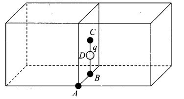 ncert-exemplar-problems-class-12-physics-electric-charges-fields-28