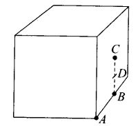 ncert-exemplar-problems-class-12-physics-electric-charges-fields-24