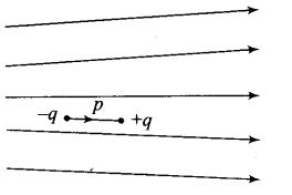 ncert-exemplar-problems-class-12-physics-electric-charges-fields-10
