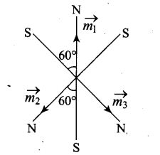 ncert-exemplar-problems-class-12-physics-magnetism-and-matter-21