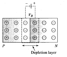 ncert-exemplar-problems-class-12-physics-semiconductor-electronics-materials-devices-and-simple-circuits-21